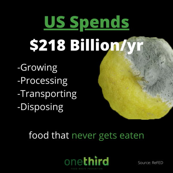 the US spends $218 billion per year on food that never gets eaten