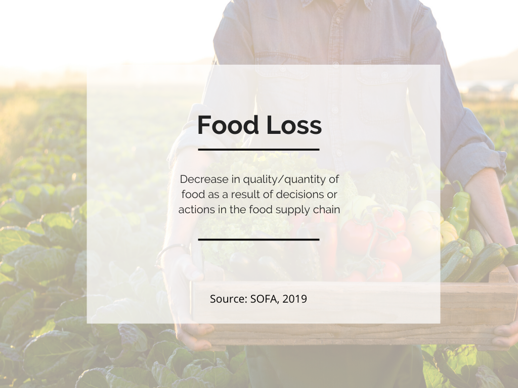 definition of food loss