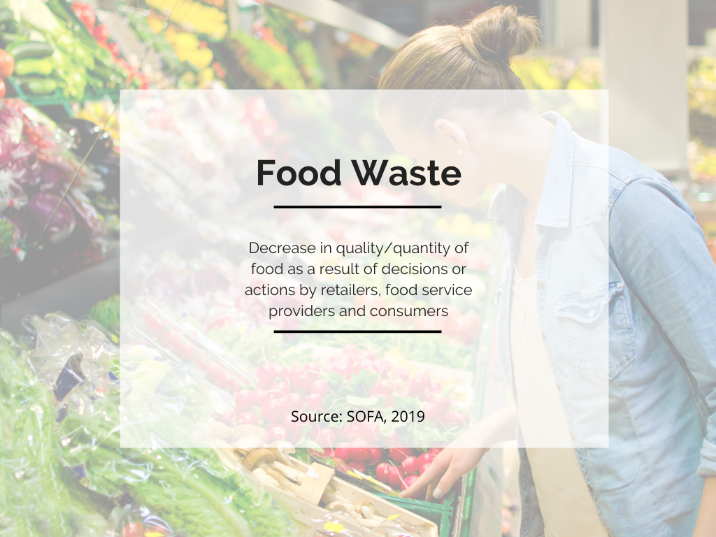 definition of food waste