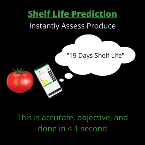 shelf life prediction