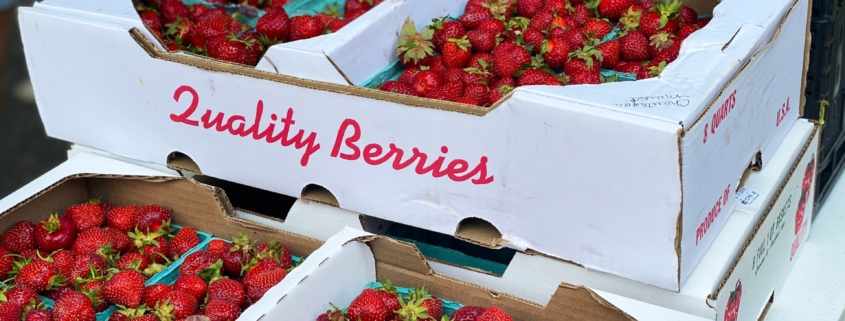 carton of strawberries that passed produce specification